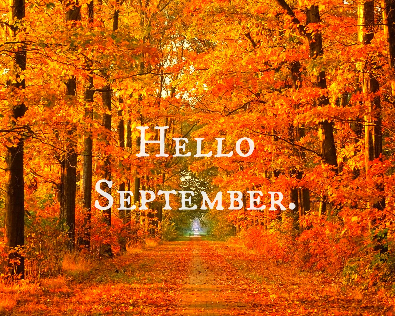 Looks - September Hello tumblr pictures video